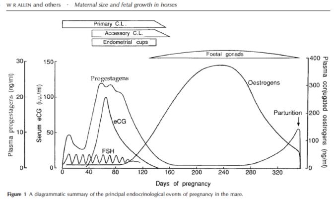 Allen et al.png